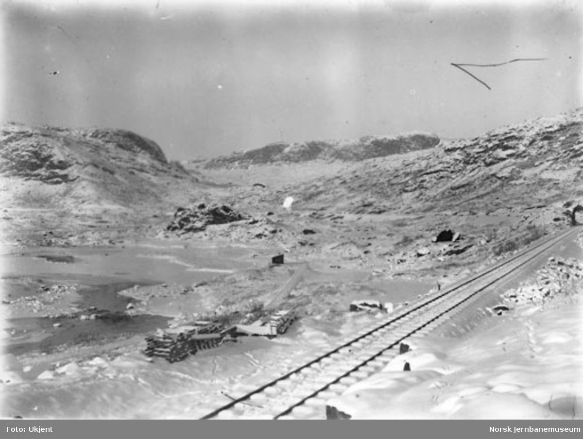 Linjeparti langs Bergensbanen østenfjells vinterstid