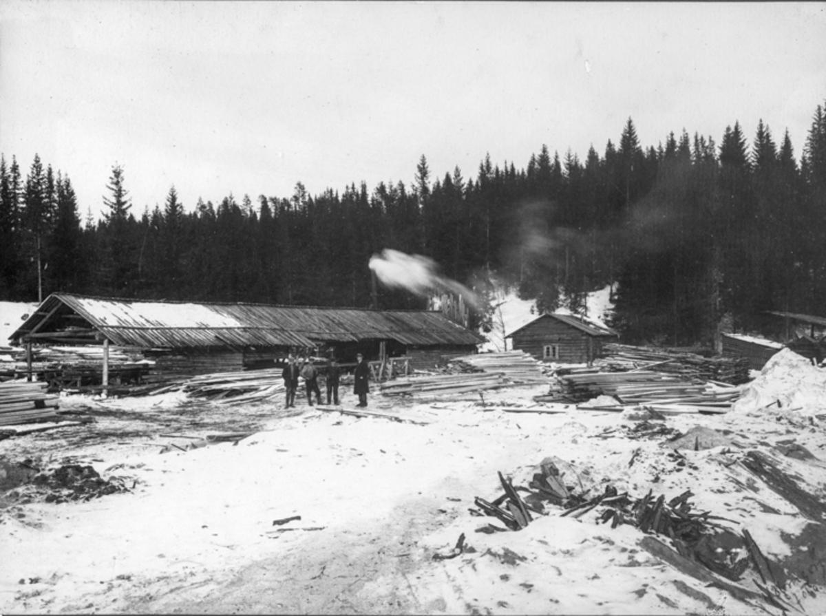 Dampsag. Dampsagene avløste vannsagene mot slutten av 1800-tallet. Store kjøp av tømmer på rot gjorde det mulig å skjære tømmeret langt fra vassdragene. Usikkert om det er i Eidsvoll.