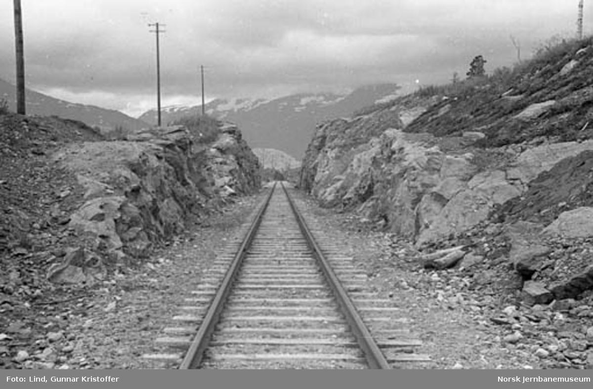 Nordlandsbaneanlegget : linjeparti ved km 556,7 mellom Hjartåsen og Krokstrand