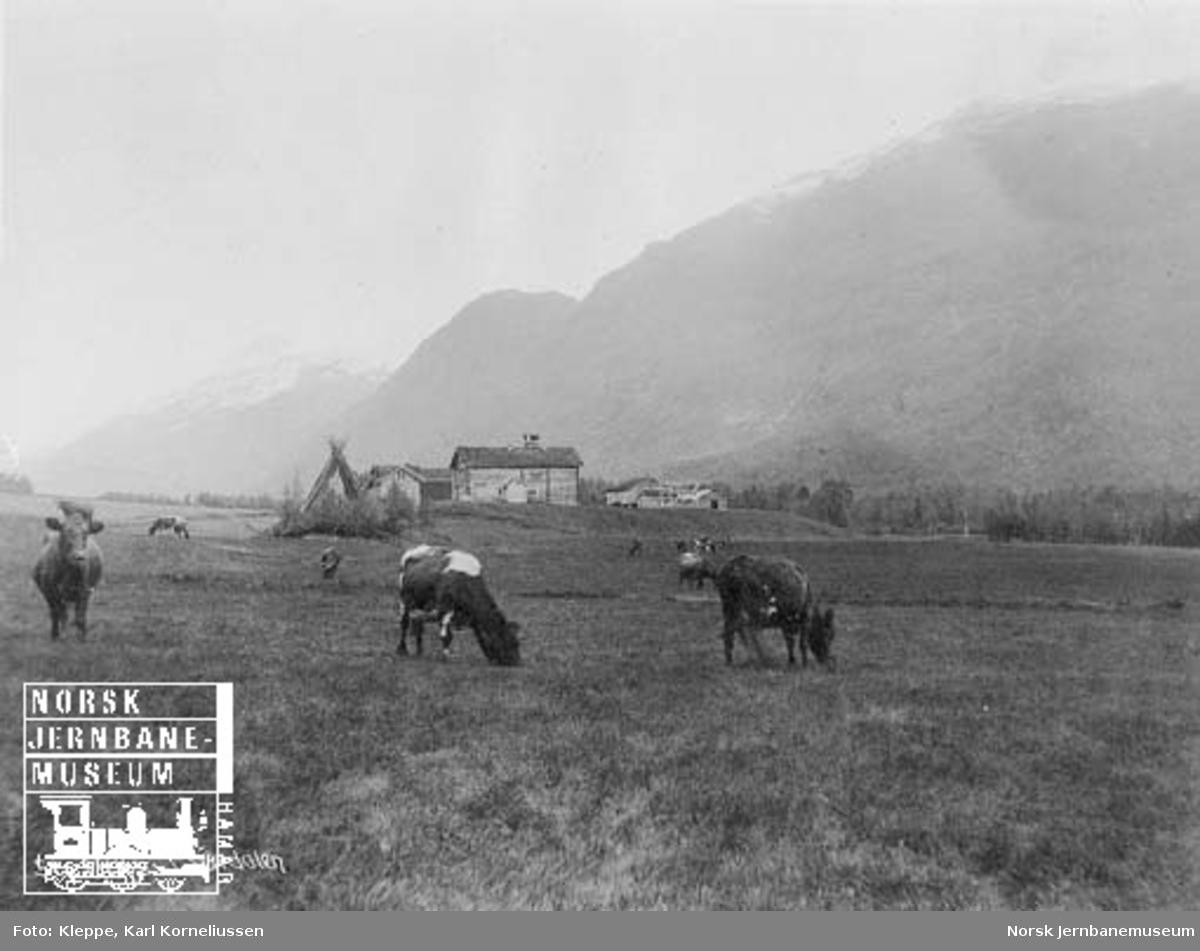 Befaring av Tromsbanen : Melhus i Sørdalen
