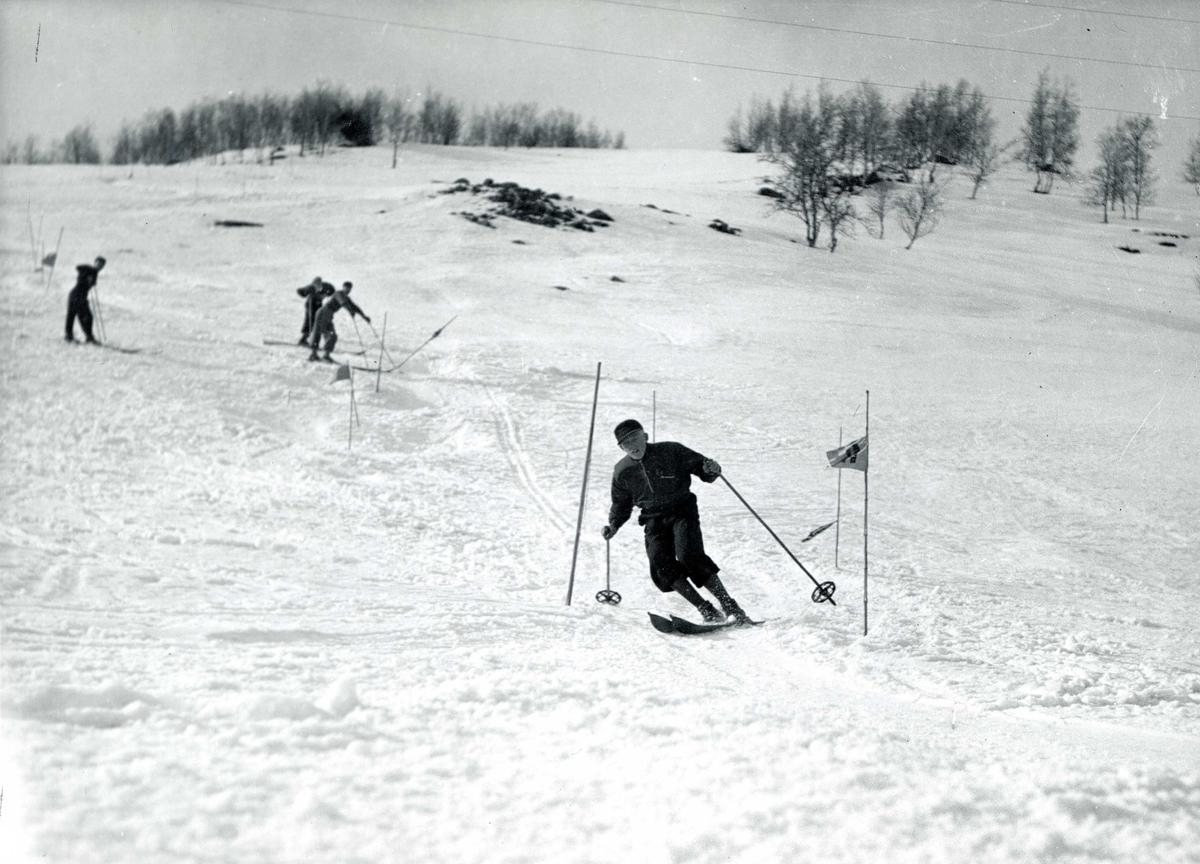 Fire skiløpere i slalåmbakke.