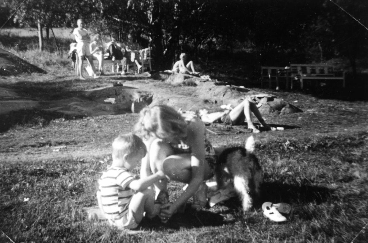 Kvinne, gutt og hund på feriehjemmet Kirkevik på Nesodden, ca 1955