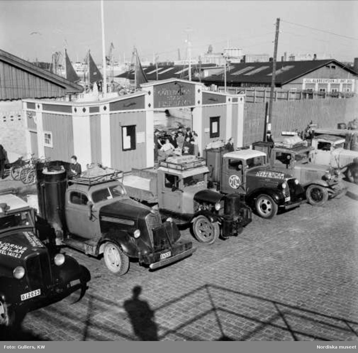 Lastbilar framför Göteborgs fiskehamn