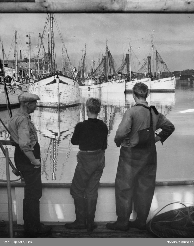 Göteborg. Tre fiskare som tittar ut över hamnen och fiskebåtarna