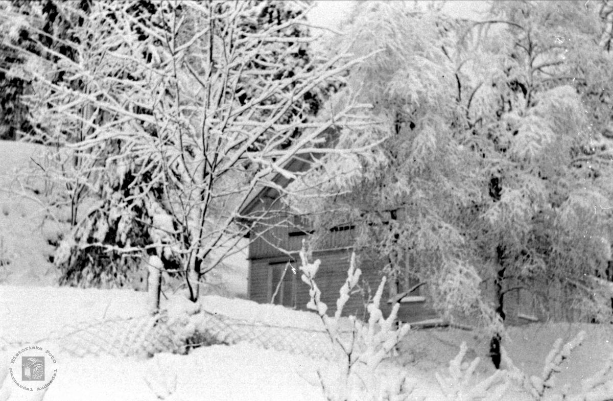 Hus på Foss i Bjelland.