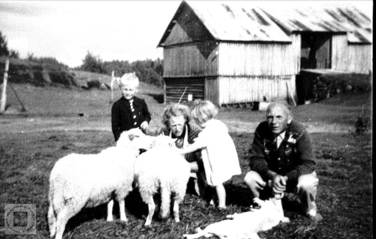 Fam.+sauer+hunden Topsy på Indre Tuen, Skuland, Laudal.