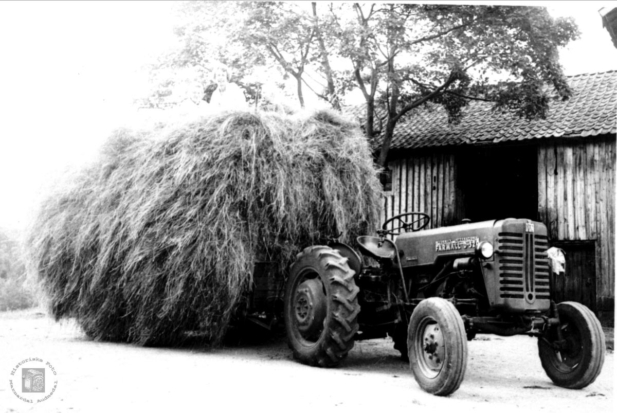 Første traktor på Eikså heia, Øyslebø.