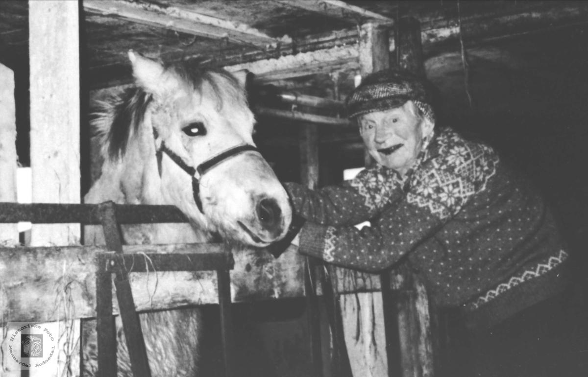 Olav Finsådal med hesten.