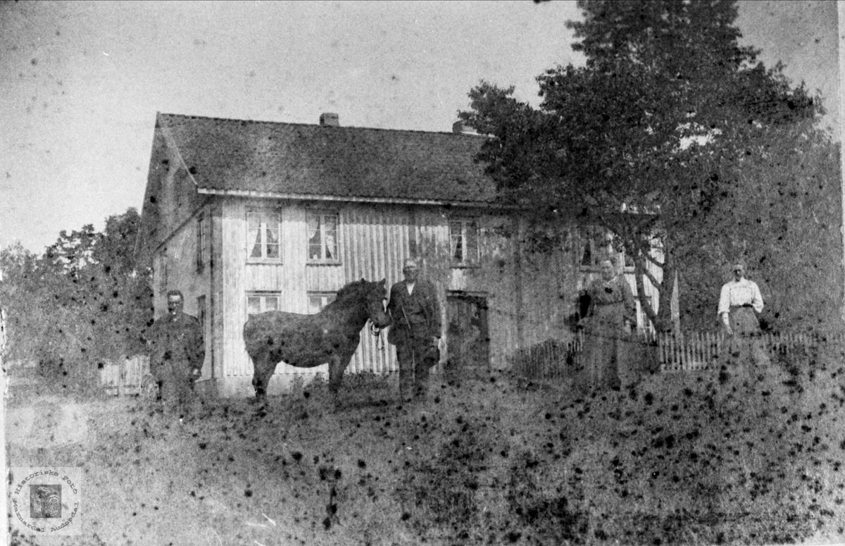 Hestevising på Høye i Øyslebø.