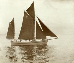 No. 31. - regattaen Aalesund 1898
