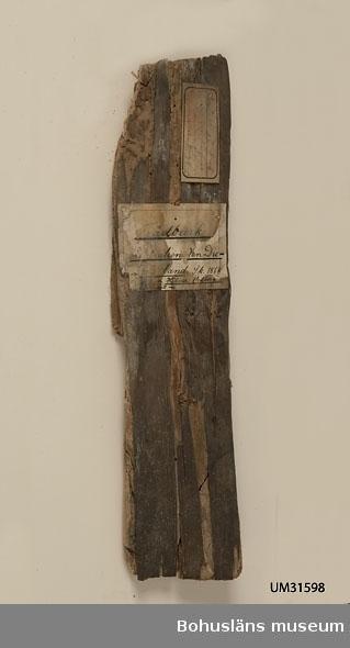 Ett stycke mycket porös bark från ett träd.  Två handskrivna pappersetiketter finns klistrade på barkbiten. På den ena etiketten lyder texten: Prov på bark. .........infödingarne ... Tasmania förfärdiga tyger. Sk. 1862 av Hilmer Hedberg Hobart town. Text på andra etiketten (vattenskadad): Trädbark. Australien, Van Diemens land. Sk. 1864 av Herr Hilmer Hedberg ... där bosatt nu.  Uppgift i handskriven gåvoförteckning för år 1862: Hedberg, Hilmer, Herr, Hobarttown, Tasmania, 3 vaser af ormbunkträd förfärdigade af infödingarne på Tasmania, en båge med 2 koger förgiftade pilar, från Nya Holland, prof på bark hvaraf infödingarne förfärdigade tyger, en klubba, utaf konungen af Tessee-öarna skänkt till Herr Hedberg, en Boomerang (ett vapen som nyttjas af infödingarna, en påse flätad af bast, en dito af tråd.  Fler uppgifter om givaren - se UM701. Föremålet har funnits okatalogiserat i museets samlingar fram tills år 2011.