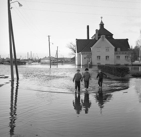 Översvämning av området runt badhuset i Uddevalla, trev pojkar vadar genom vattnet