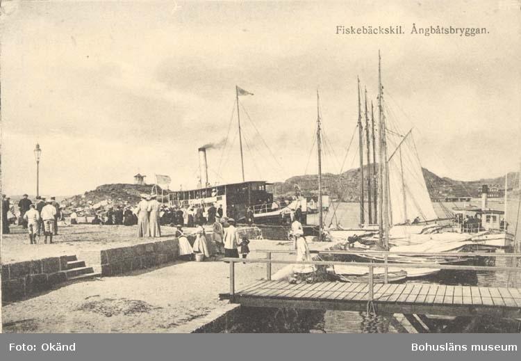 """Tryckt text på kortet: """"Ångbåtsbryggan. Fiskebäckskil""""  """"Tekla Bengtssons Pappershandel, Fiskebäckskil."""""""