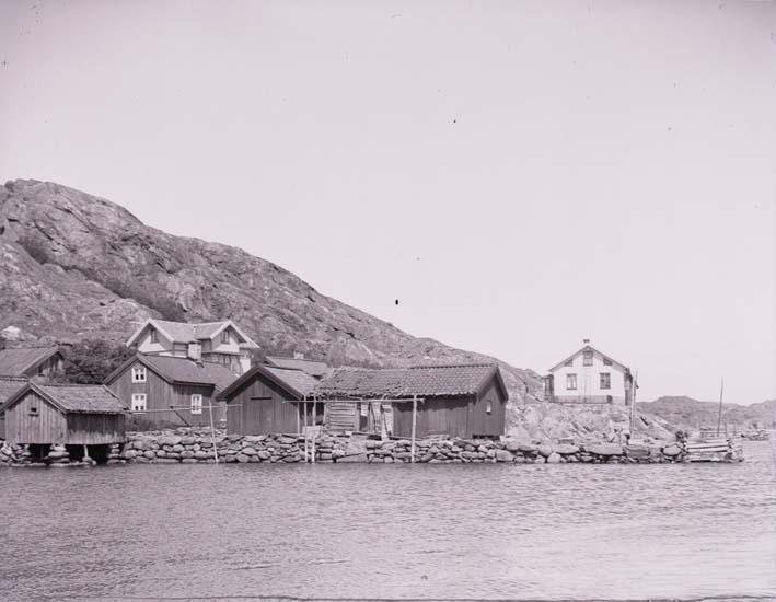 Hamnen med Gästgiveribryggan i Rågårdsvik 1904.