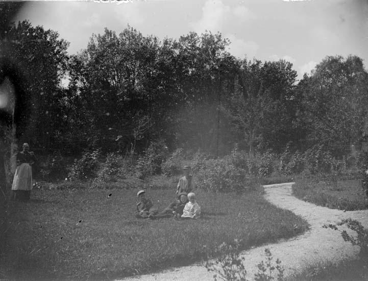 """Enligt text som medföljde bilden: """"Skaftö, Trädgården 1898""""."""