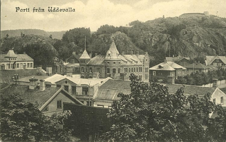 """Tryckt text på vykortets framsida: """"Parti från Uddevalla."""""""