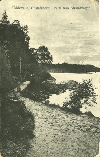 """Tryckt text på vykortets framsida: """"Uddevalla, Gustafsberg. Parti från Strandvägen."""""""