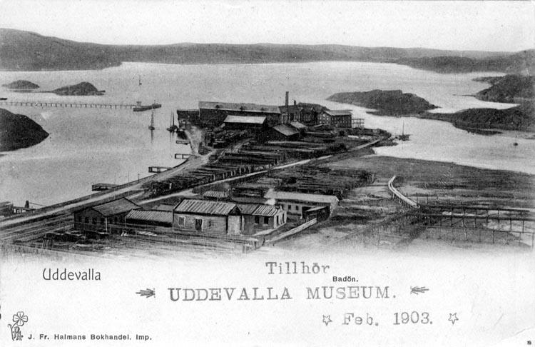 """Tryckt text på vykortets framsida: """"Uddevalla Badön.""""  ::"""