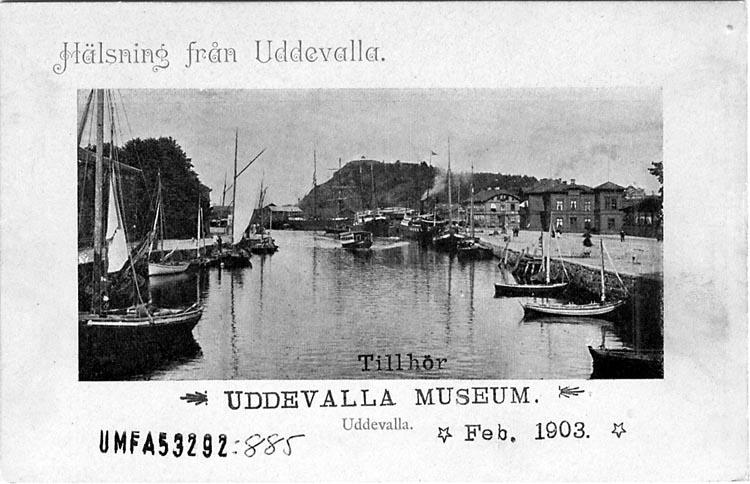 """Tryckt text på vykortets framsida: """"Hälsning från Uddevalla."""""""