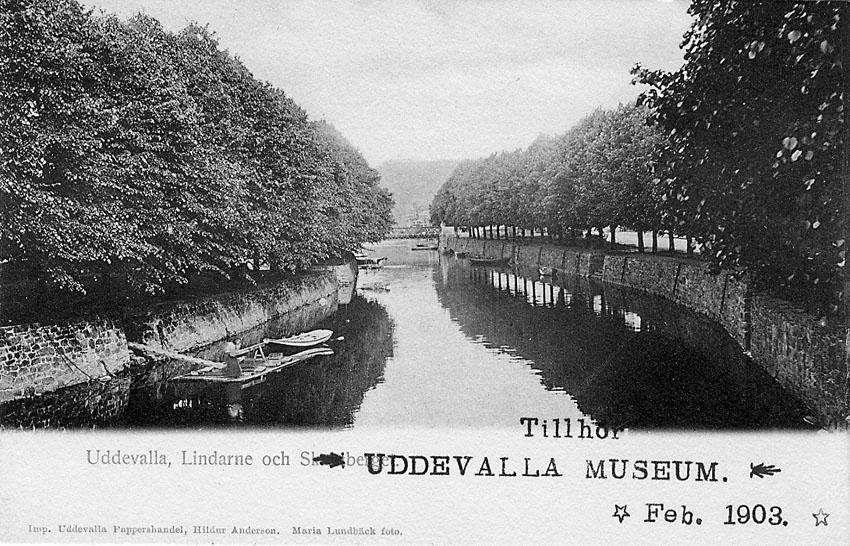 """Tryckt text på vykortets framsida: """"Uddevalla Lindarne och Skansberget""""."""