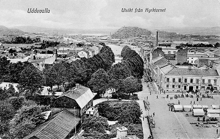 """Tryckt text på vykortets framsida: """"Uddevalla Utsikt från kyrktornet""""."""