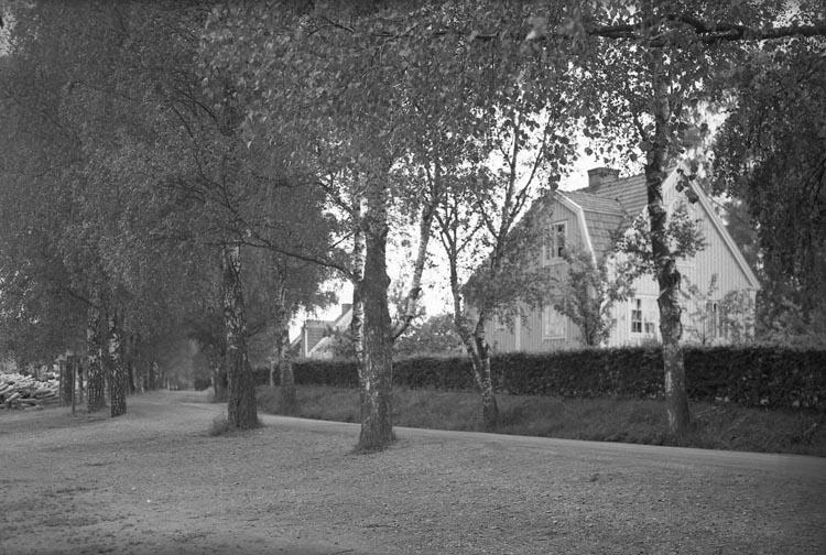 """Enligt fotografens noteringar: """"1938. 53. SvärdsTången""""."""