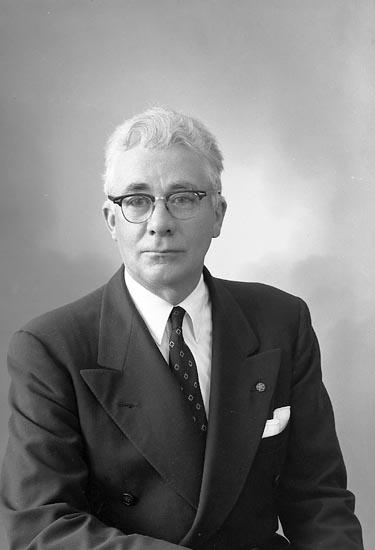 "Enligt fotografens journal nr 9 1958-: ""Benson, Herr Albert Hellene, Hjälteby""."