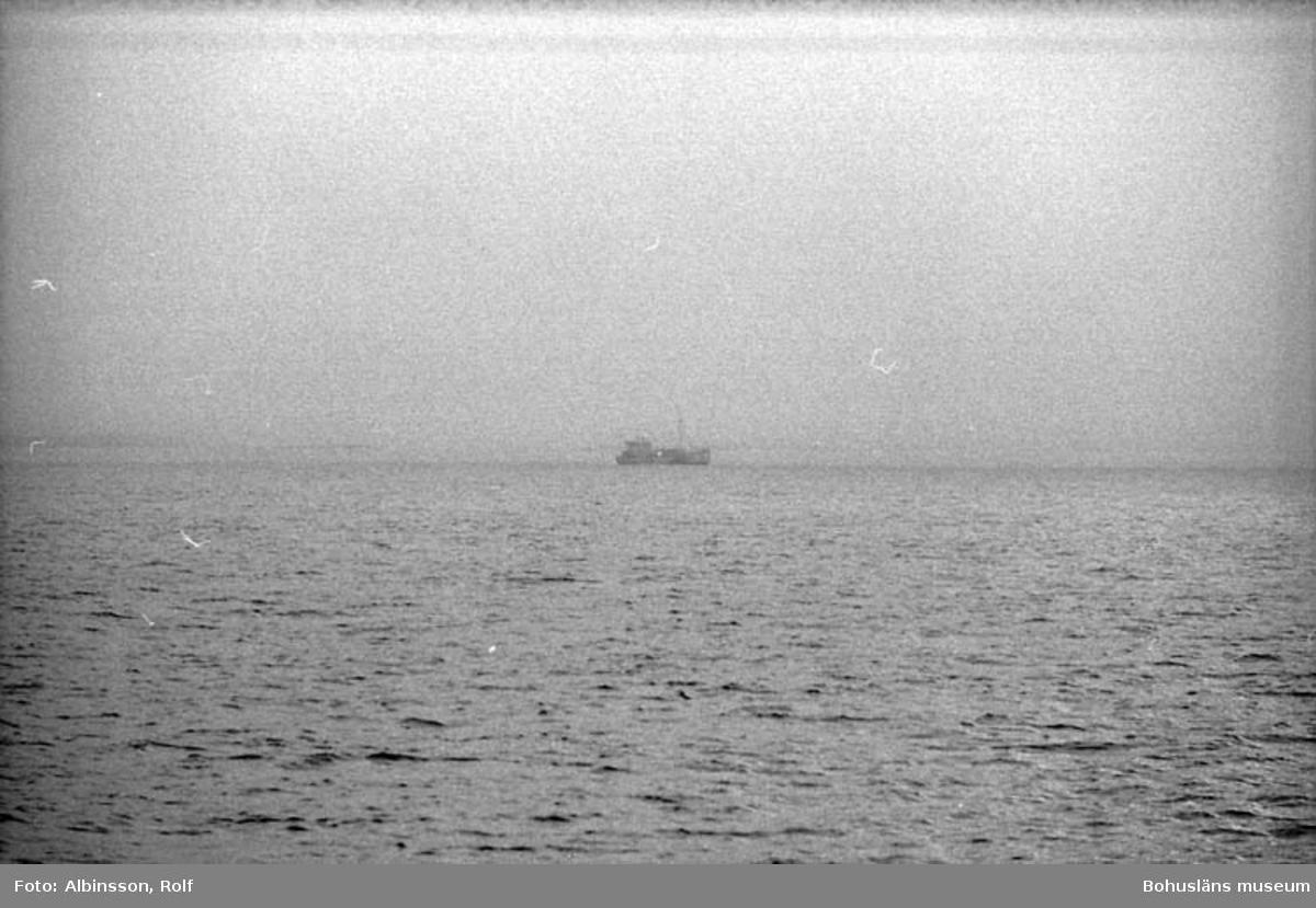 """Enligt fotografens noteringar: """" På babordssidan, en trålare skymtar i dimman.""""  Fototid: 1996-03-06."""
