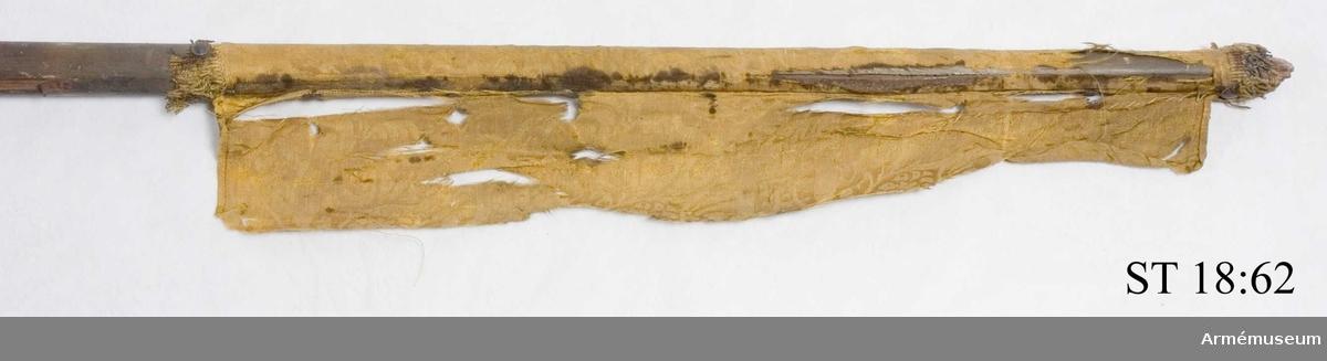 Stång av furu, brunmålad med svarta flammor. Rester av standarduk i gul sidendamast och yllefrans.