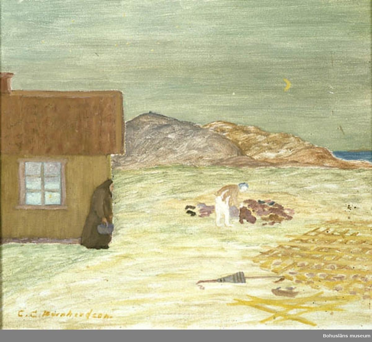 """Baksidestext:  """"i skymningen gick gumman för att hämta ved. då fick Hon se att det stod en halvnaken man och letade i vraghögen på swaá. Där låg nämligen En hög Kläder från sista strandningen bland annat vrak- gods. Hon vände och gick in. Det var gasten Hon sett. Folklivsskildring Skaftö. C.G. Bernhardson.  Ordförklaring: Swaá = dial. för berghäll, berg i dagen; enligt Bernhardson också kallat """"skåberg"""", strandning = skeppsbrott vid kusten, gast = """"spöke"""", gengångare.  Litteratur: Bernhardson, C.G.: Bohuslänskt folkliv, Uddevalla, 1982, s. 244. Titel i boken: Gasten.  Övrig historik; se CGB001"""