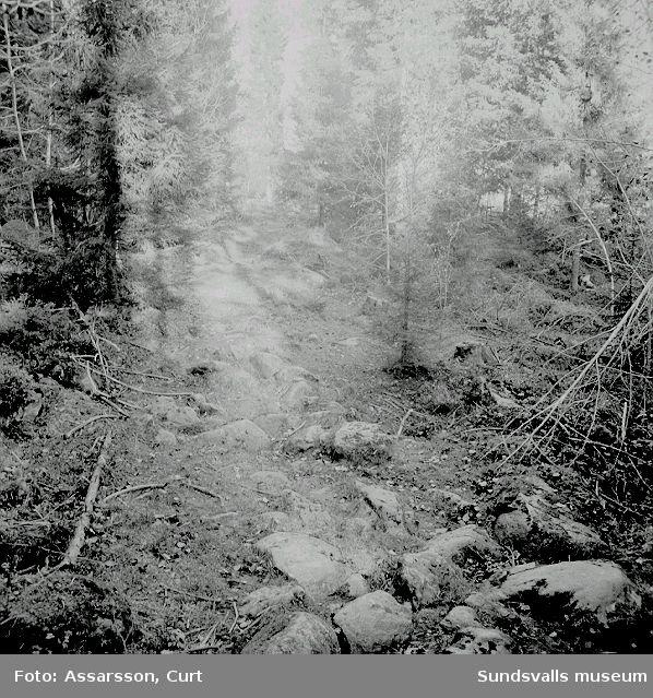 Gamla vägen (Kyrkvägen) i Norr-Huljen.