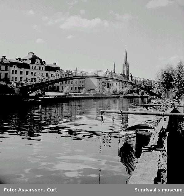 Selångersån, sedd från Tivolibron med  dykdalber i förgrunden. Puckelbron.
