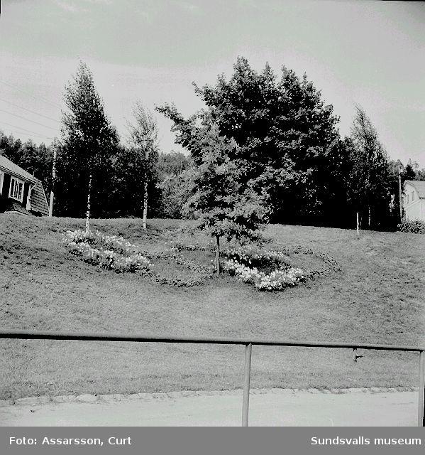 Idrottsplanen i Sundsvall