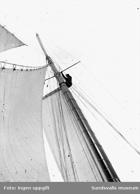 """Man uppe i den ursprungliga gaffelriggen på segelbåten """"Allona"""".""""Allona"""" beställdes av Wilhelm Bünsow, med Lennart Norström som senare ägare. Hon byggdes 1899 på Stockholms Båtbyggeriaktiebolag,t roligen ägt av August Plym. Konstruktören var ingenjör Axel Nygren.Längd över allt, l ö a, var 26 meter, längd efter vattenlinjen, l v l, 19 meter, bredd 5,20 meter, djupgående 3,70 meter. Deplacementet var på 9 ton. Segelarean omfattade 300 m2 (375 m2 ursprungligen, före omriggningen). Båten var utrustad med gaffelrigg, bermudasrigg, mesanmast (för att sätta segelmängden lättare?). I kajutan fans sex kojer, i chefshytten och i styrmanshytten vadera fyra kojer, samt tre kojer i skansen."""
