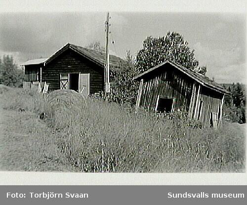 SuM-foto011795