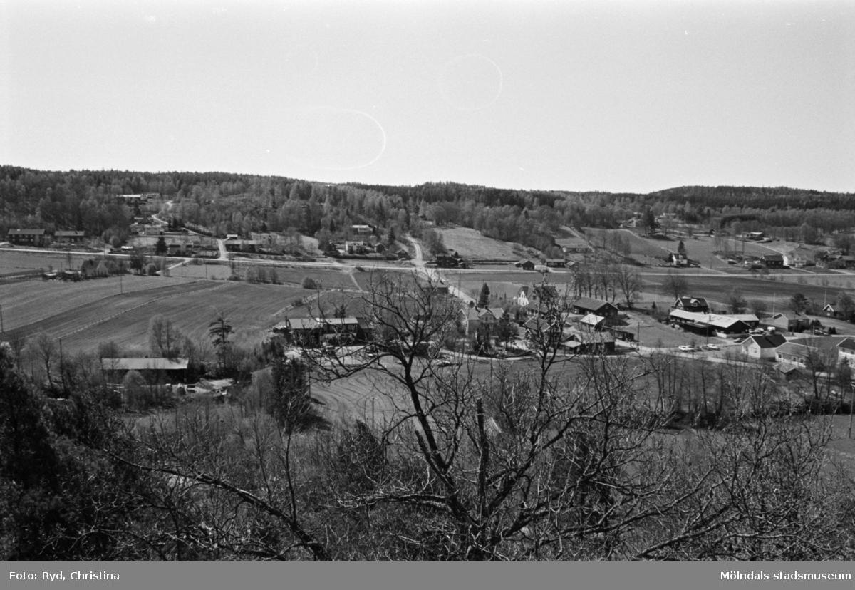 Vy från Börsåsberget över Hällesåkersby, 1991.