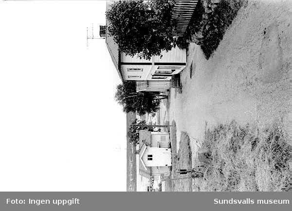 SuM-foto015595