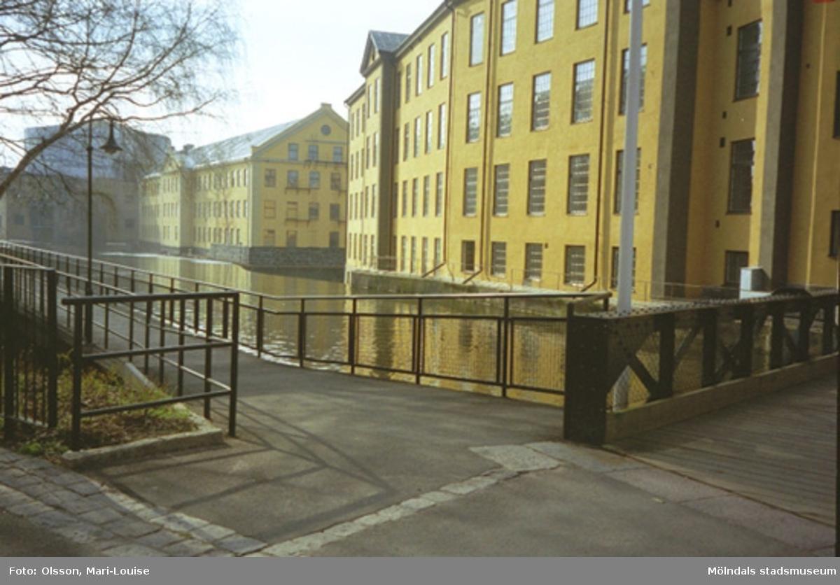 Miljödetaljer från Strömområdet i Norrköping, 1995-05-03.