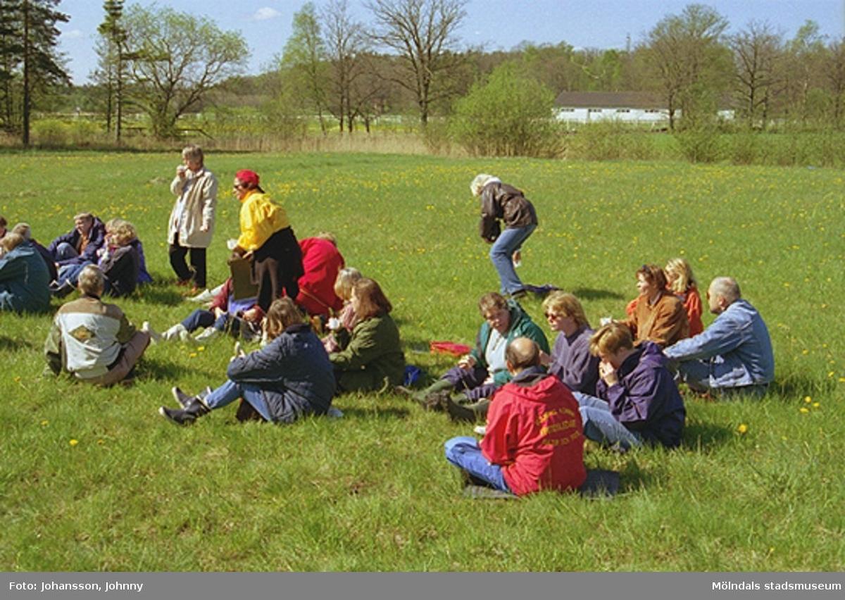 Personal från Kultur och Fritid sitter eller står på en gräsmatta.