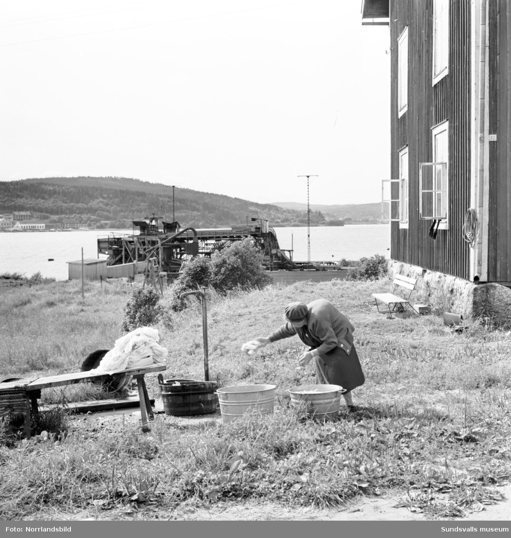 Reportagebilder från Alnö tagna för Expressen. En äldre dam som tvättar utomhus, sågverksbilder, färjan med mera.