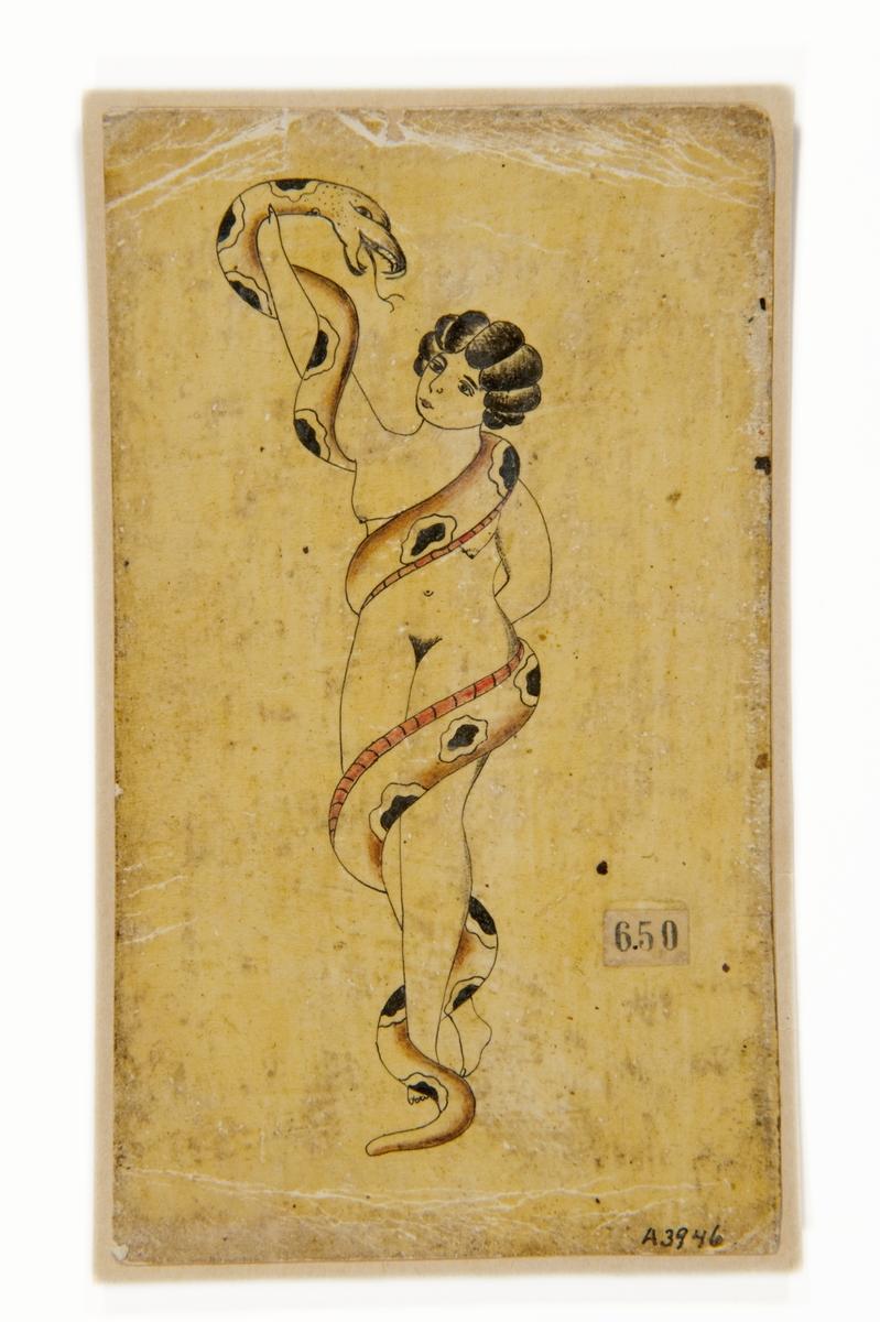 """Tatueringsförlaga. Naken kvinna omslingrad av orm.  """"Kvinnan och ormen är ett av de vanliga motiven bland Sjöhistoriska museets förlagor. Ormen som slingrar sig runt kvinnan kan ge associationer till Eva och ormen i paradiset. Det kan även förknippas med en ormtjuserska, där kvinnan har kontroll över ormen.""""  Text från appen """"Tatuera dig med Sjöhistoriska"""" som gjordes i samband med utställningen Tro, hopp och kärlek 2012."""