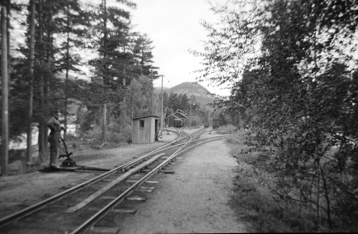 Sporskifter på Byglandsfjord stasjon