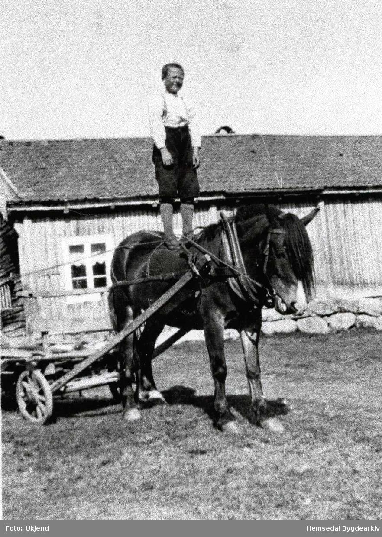 Halvor Hjelmen høgt til hest, ca. 1934