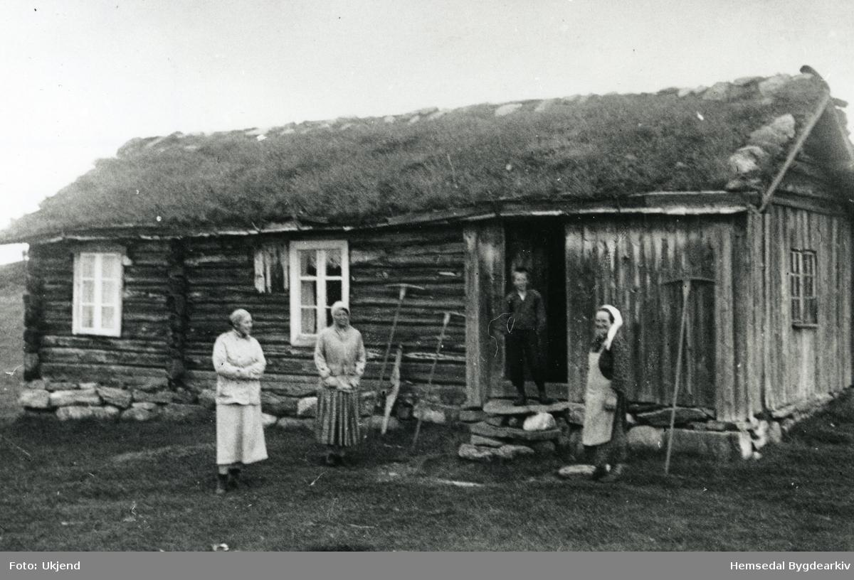 Gjærdesbua på Eikrestølane (Eikrestølo, dialekt) Gardkona Ågot (frå 1915-1952) heilt til høgre. Yngste guten Karl Gjærde, står i døropninga. Dei tek avskil med byfolka som har vore på vitjing. Biletet er frå 1937.