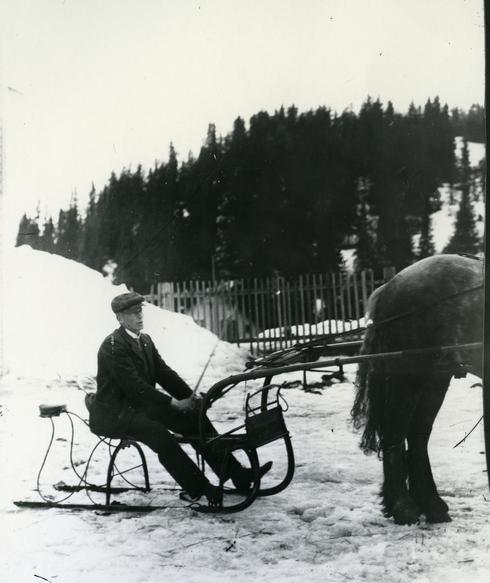 Mann sittende på slede, spent for hest