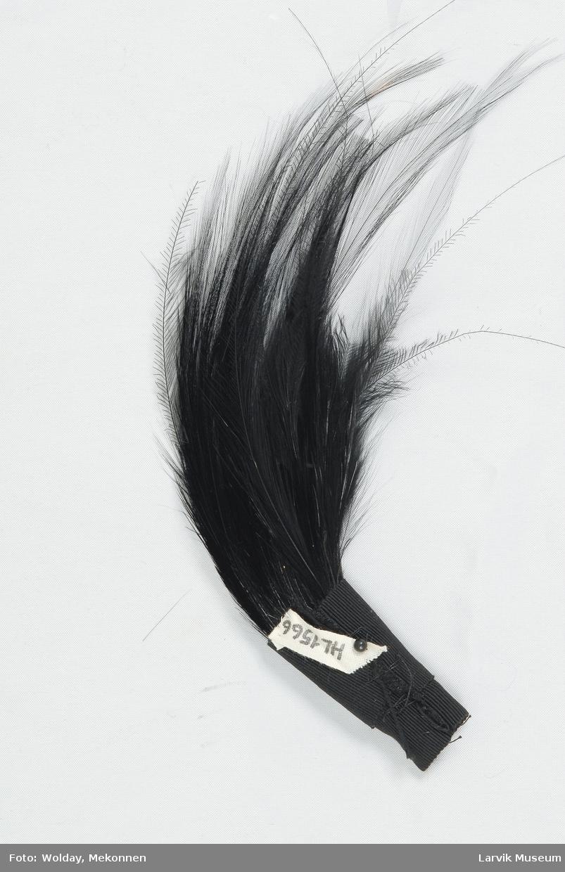 Form: et knippe sorte fjær, omviklet med sort bånd