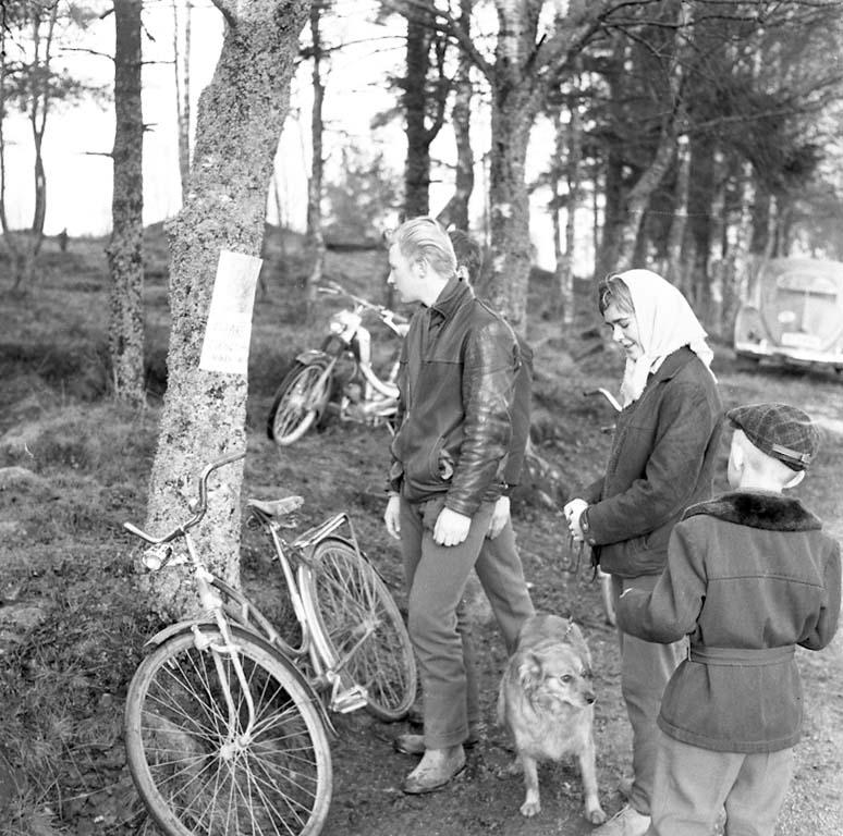 """Enligt notering: """"Skogspromenaden Avsl Dec 1960""""."""