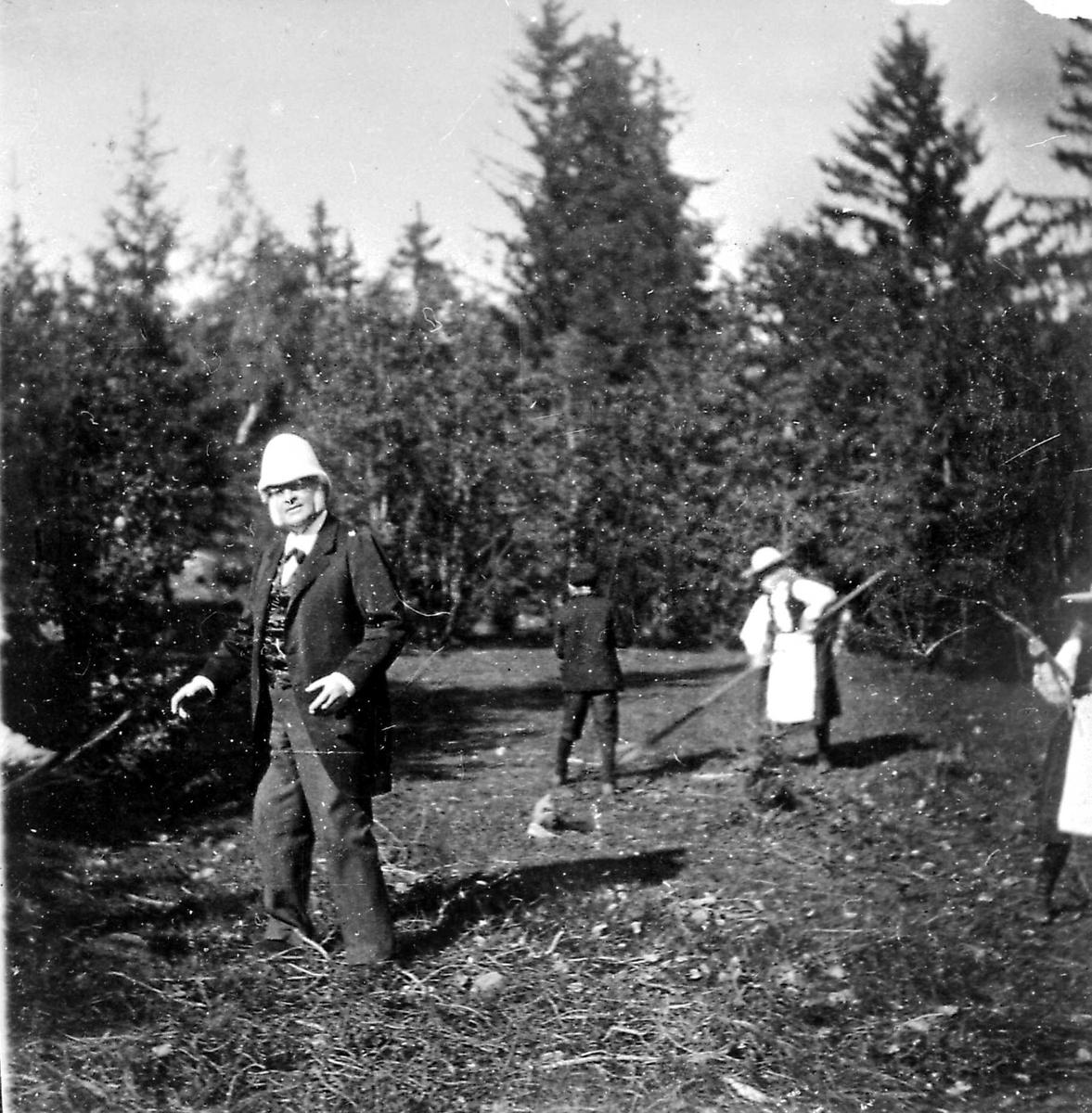 Bjørnson, Aulestad, arbeid, barnebarn, gårdsdrift,