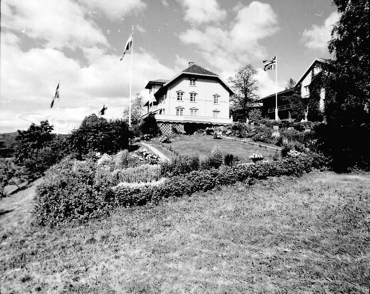 DOK:1989, Aulestad, flagg, hage,