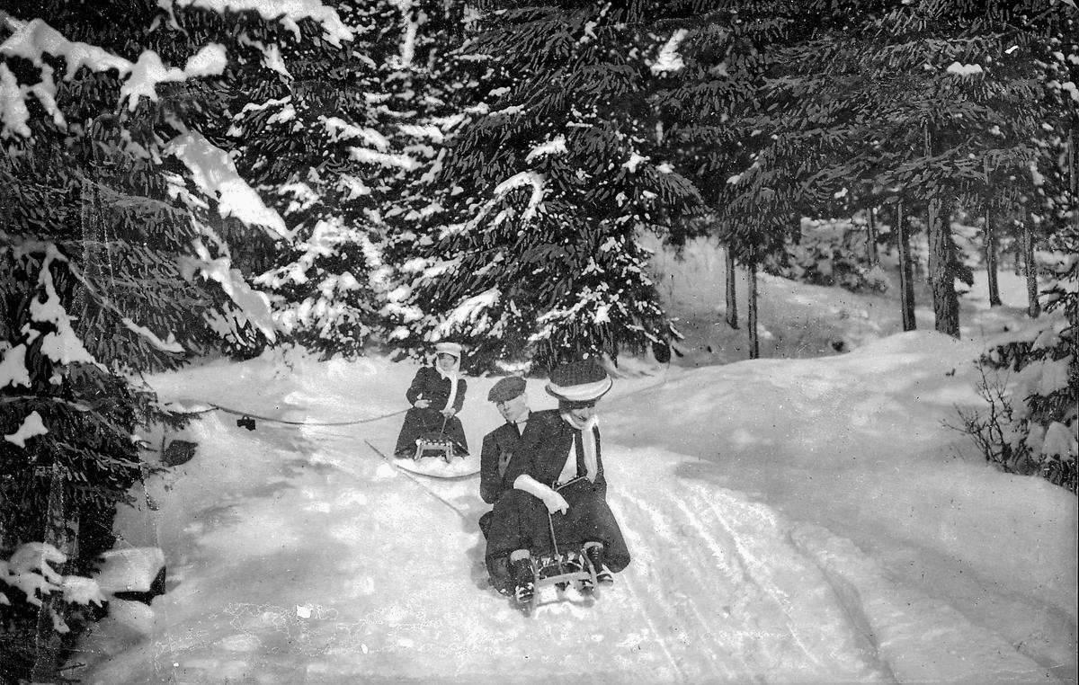 To kvinner og mann på kjelke i skogen, vinter